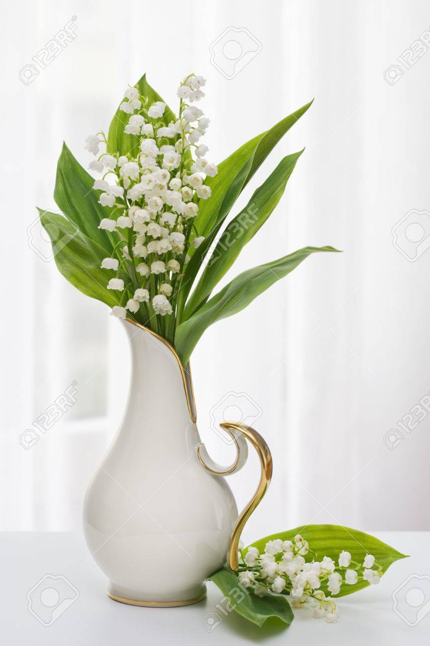 Flower vase images stock pictures royalty free flower vase lilly of the valley in vase with window light reviewsmspy
