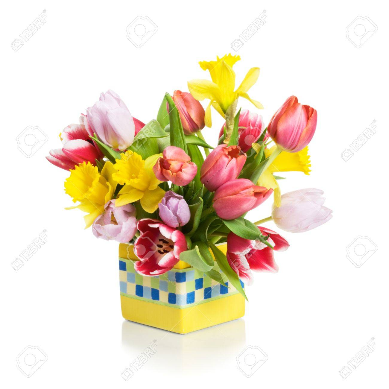 Yellow flower pot with tulips and daffodils on white background stock photo yellow flower pot with tulips and daffodils on white background mightylinksfo