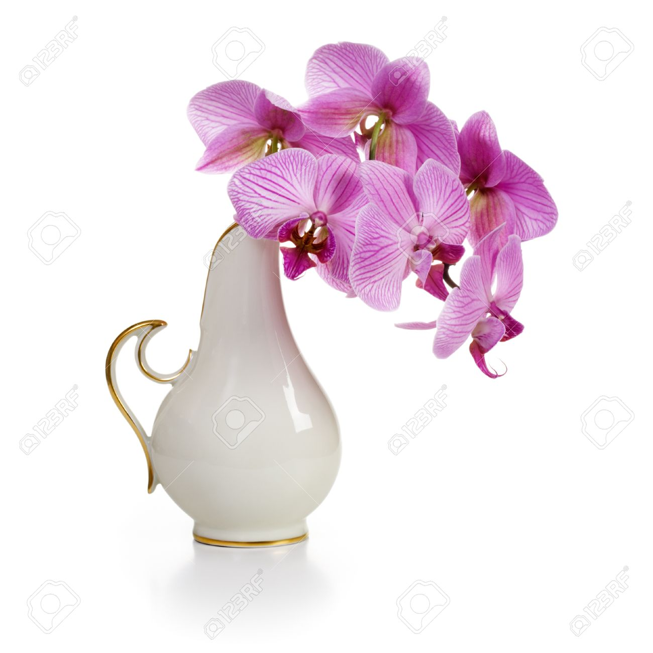 Old White Porcelain Vase With Pink Orchid Flowers On White