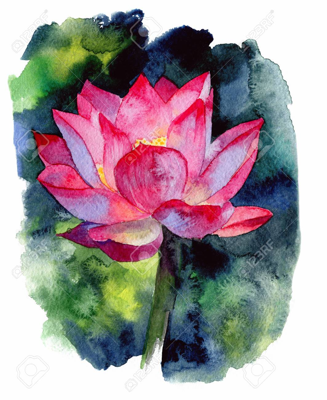 Watercolor Painting Of Single Lotus Flower Hand Drawn Illustration