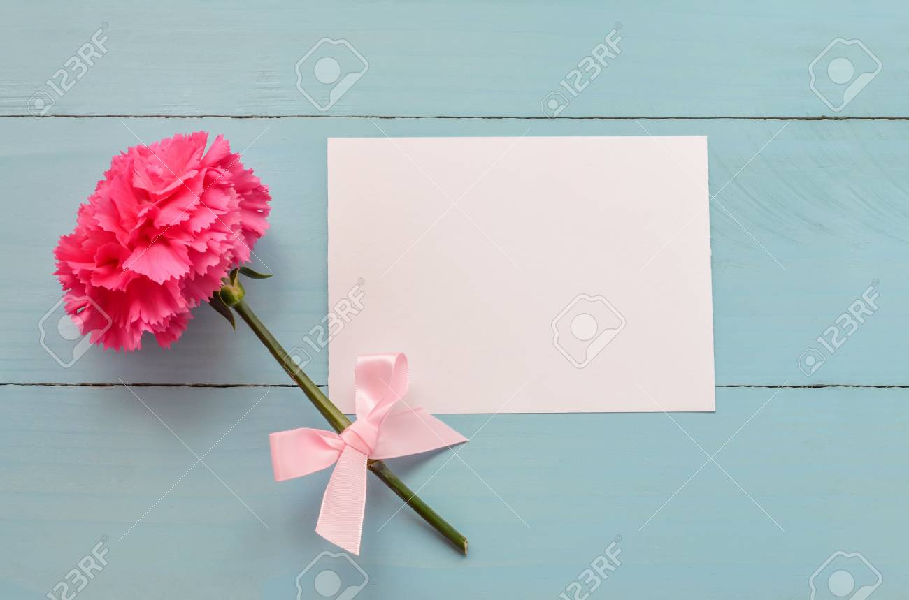 Blank White Greeting Card With Pink Carnation Flower And Ribbon