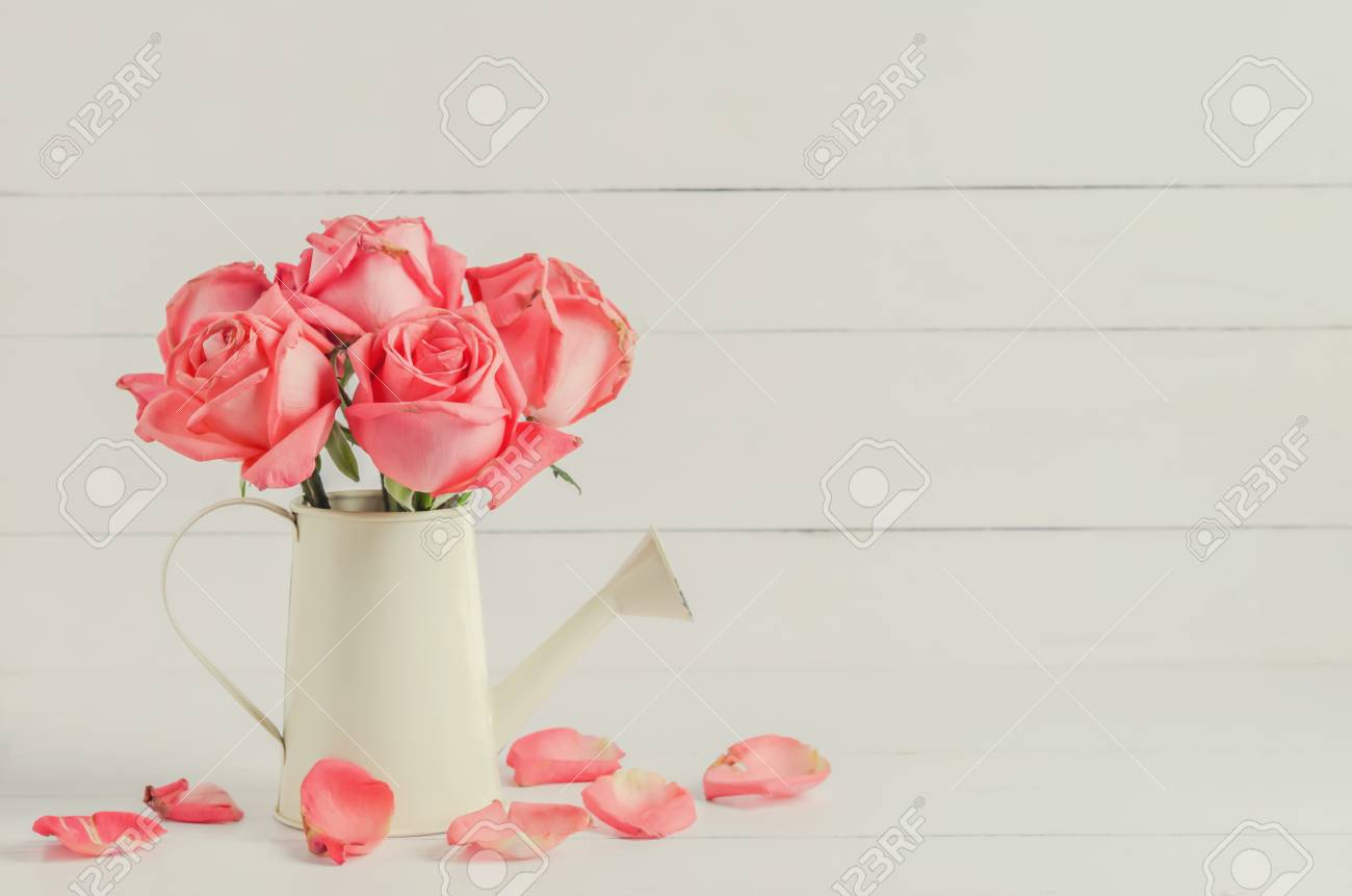 Withered pink rose flowers at watering can on white wooden stock photo withered pink rose flowers at watering can on white wooden background with vintage tone mightylinksfo