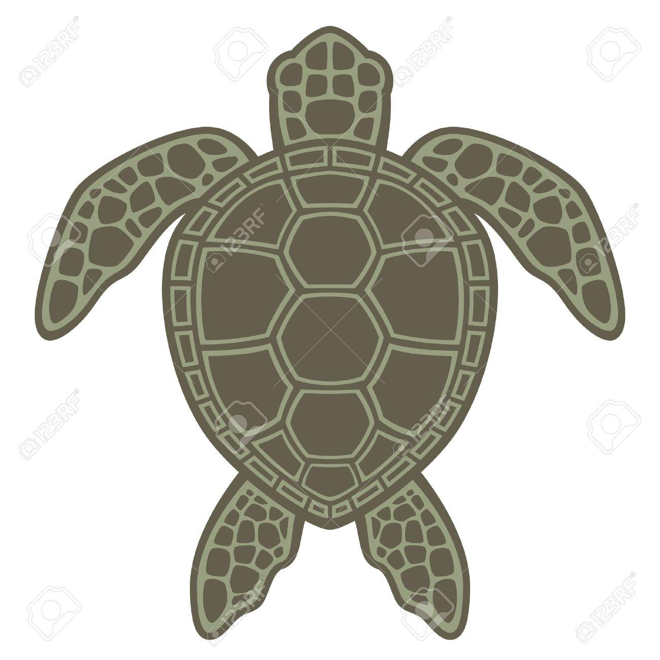 Sea Turtle Shell Sea Turtle Vector Graphic