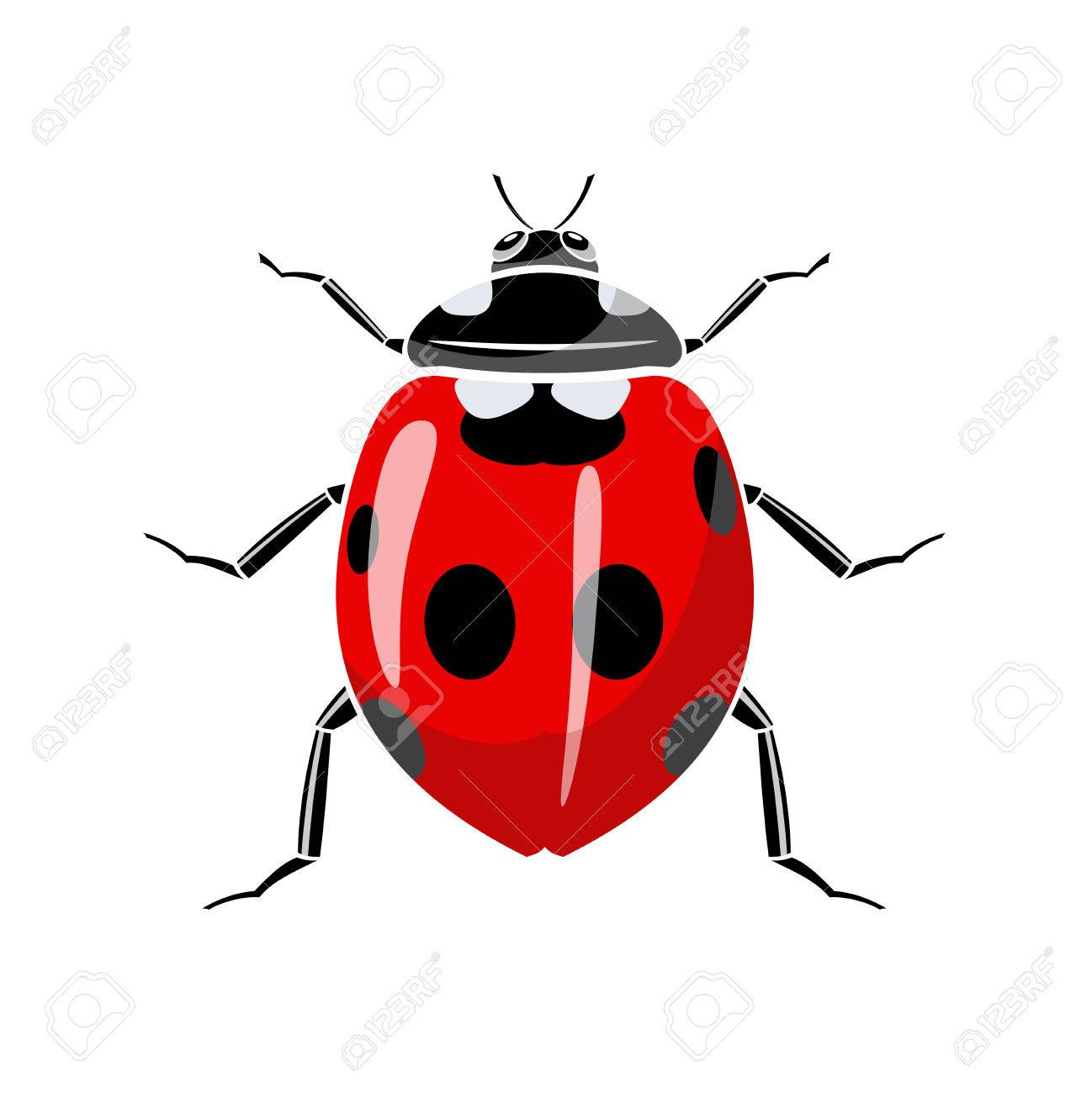Symbol of a ladybug is on a white background. - 34577244