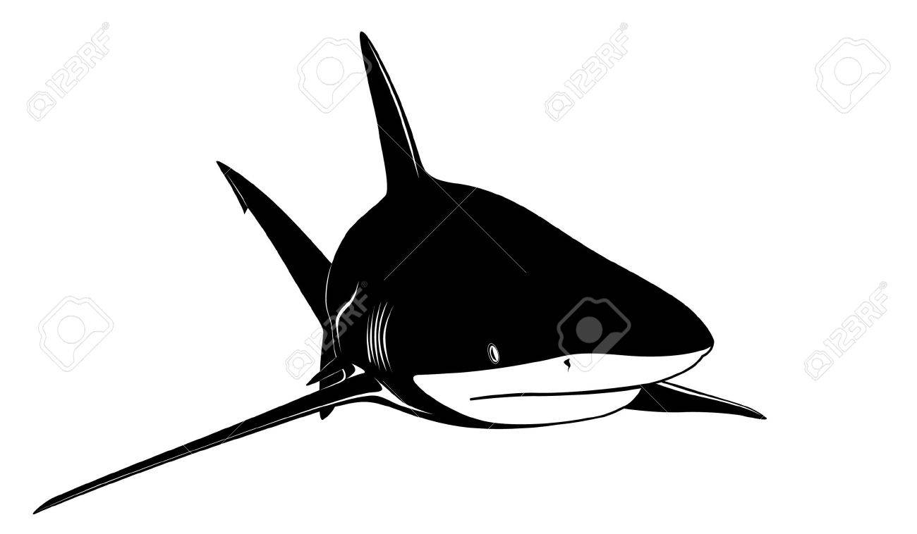 The image of a shark in the form of a tattoo Stock Vector - 6701480