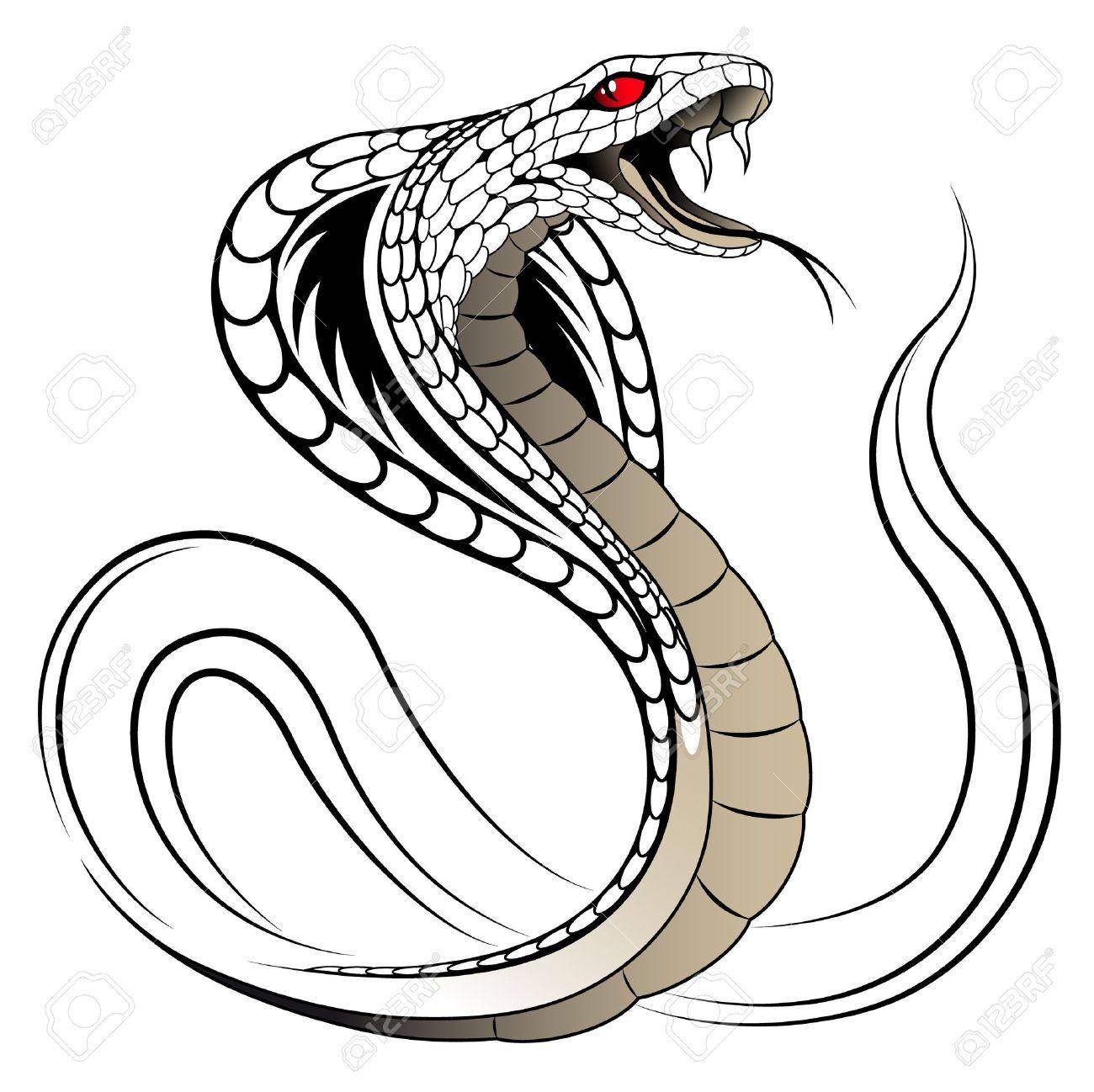 Vector Snake, Cobra - 9661244