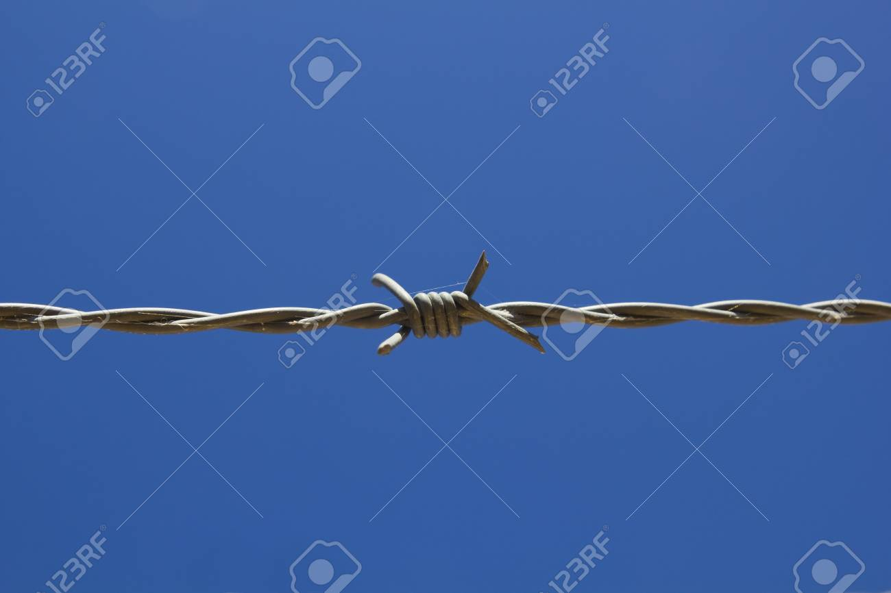 barbed wire, with blue sky background Stock Photo - 14439572