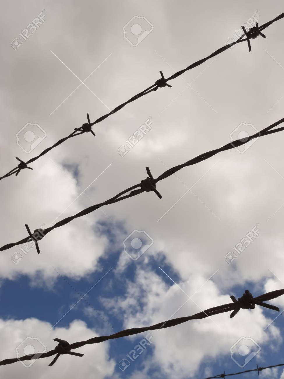 Barbed wire with a cloudy sky background Stock Photo - 17307842