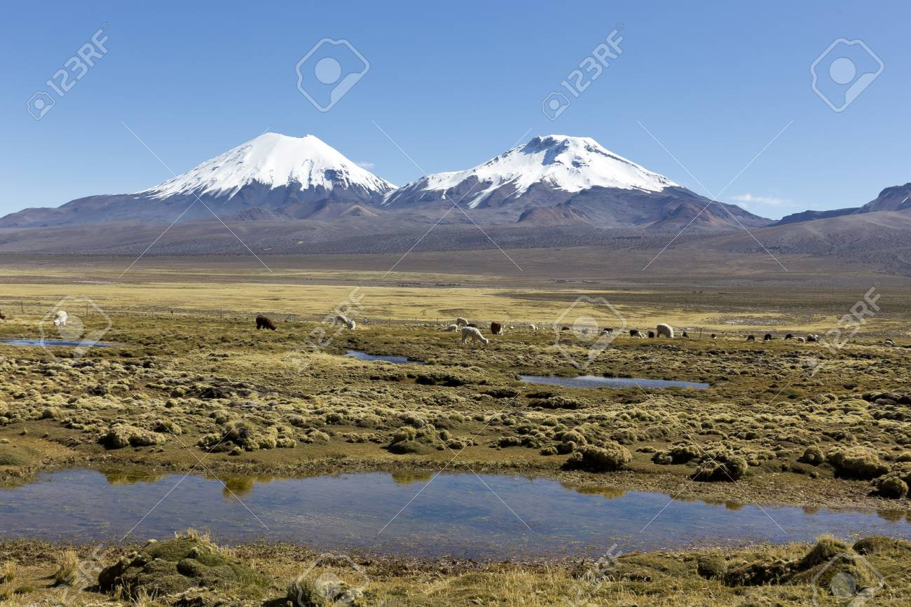 Bolivian Panoramic Landscape Of The Andes Mountains With Snow Covered Stock Photo Picture And Royalty Free Image Image 96879579