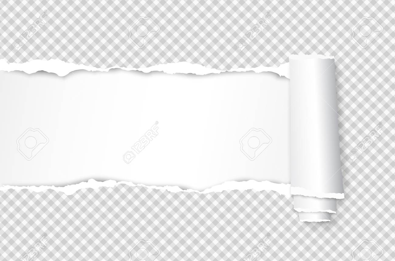 Rolled and ripped squared white notebook paper sheet for text. Vector illustration - 118096266