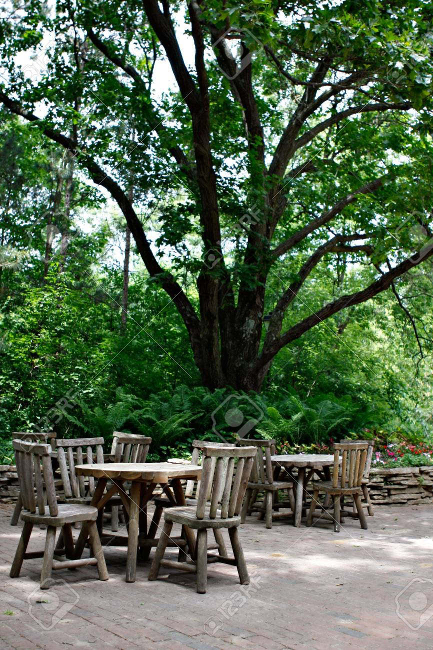 Cafeteria Tables under Big Tree Stock Photo - 3268096