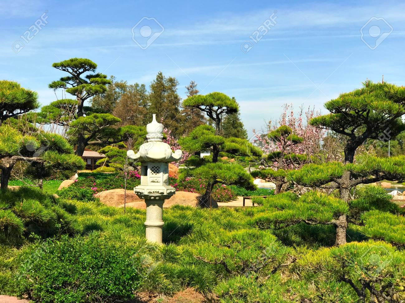 Schöne Blumen Und Bäume Im Japanischen Garten Lizenzfreie Fotos
