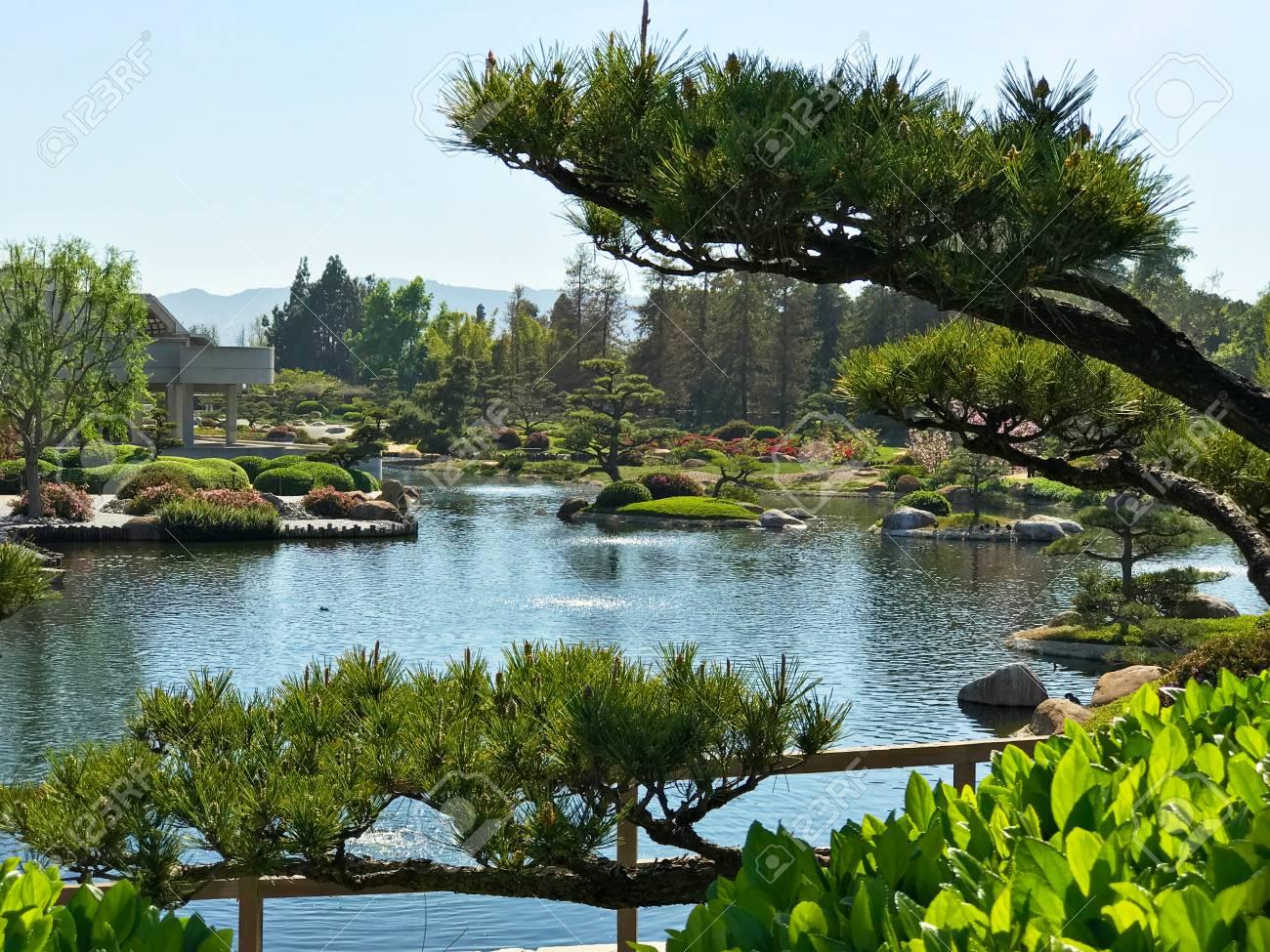 Schöne Blumen Und Bäume Im Japanischen Garten. Lizenzfreie Fotos ...