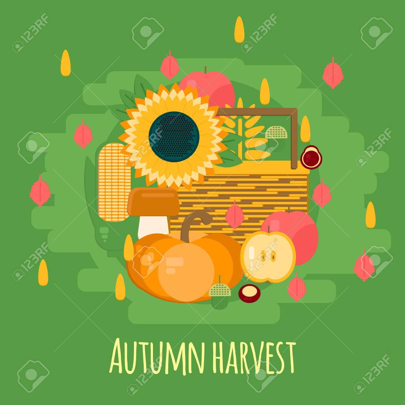 Holzkiste Mit Herbst Obst Und Gemüse. Vektor-Illustration Der Ernte ...