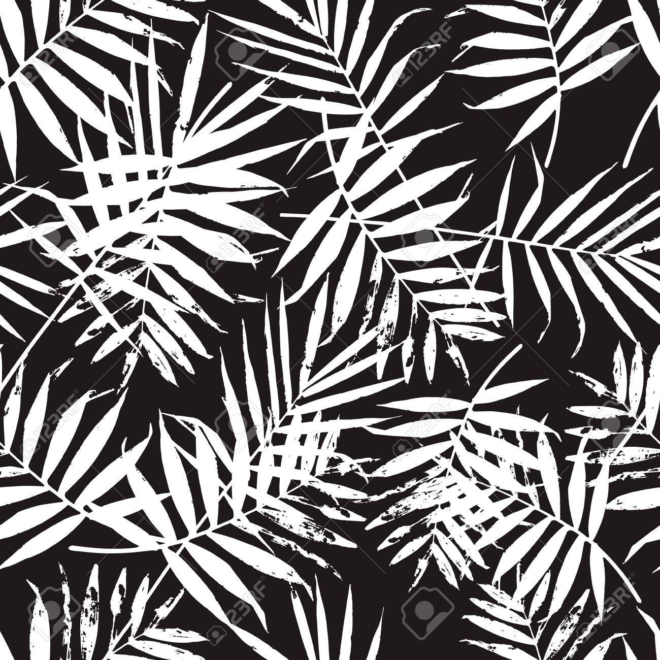 Black And White Palm Leaves Pattern Trendy Background With Palm Texture