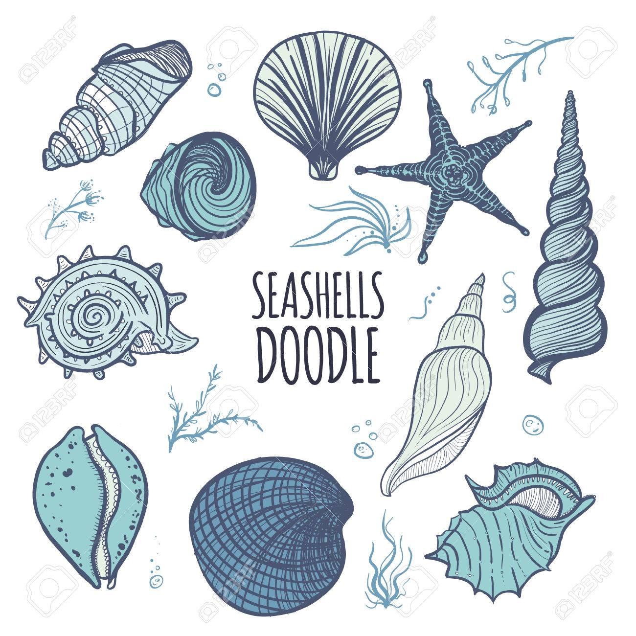 Vettoriale Insieme Variopinto Dei Seashells Su Priorità Bassa