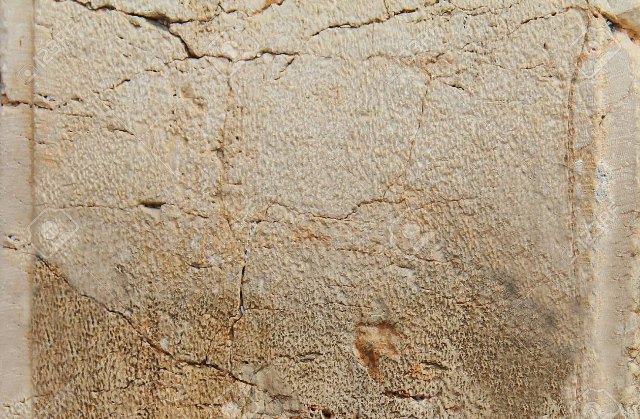 Stone from the Western Wall Stock Photo - 17350140