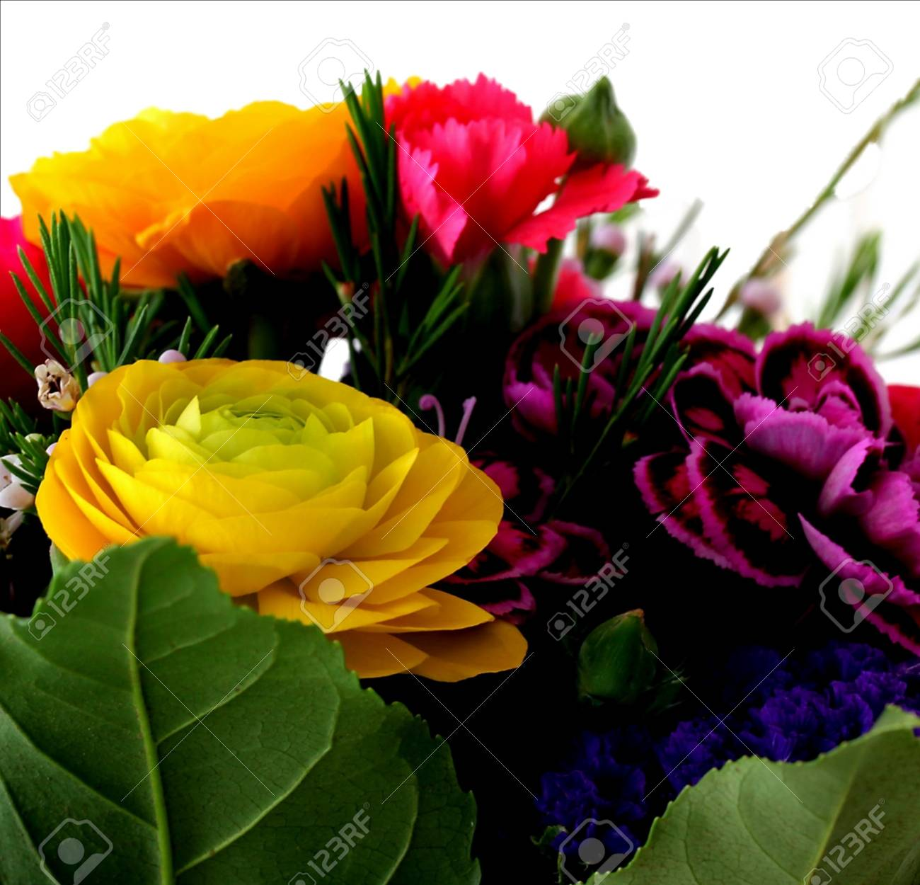 Bouquet of various flowers  isolated on white background Stock Photo - 18809839