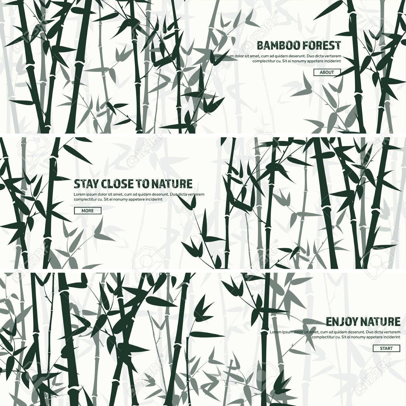 Bamboo forest set. Nature. Japan., China. Plant. Green tree with leaves. Rainforest in Asia. - 73591029