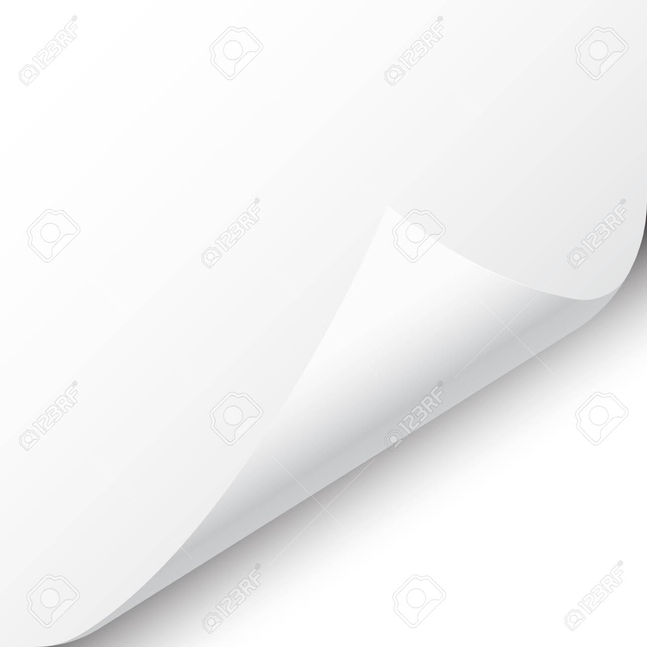 Curled page corner with shadow on white background. Blank sheet of paper. Vector illustration. - 126494328