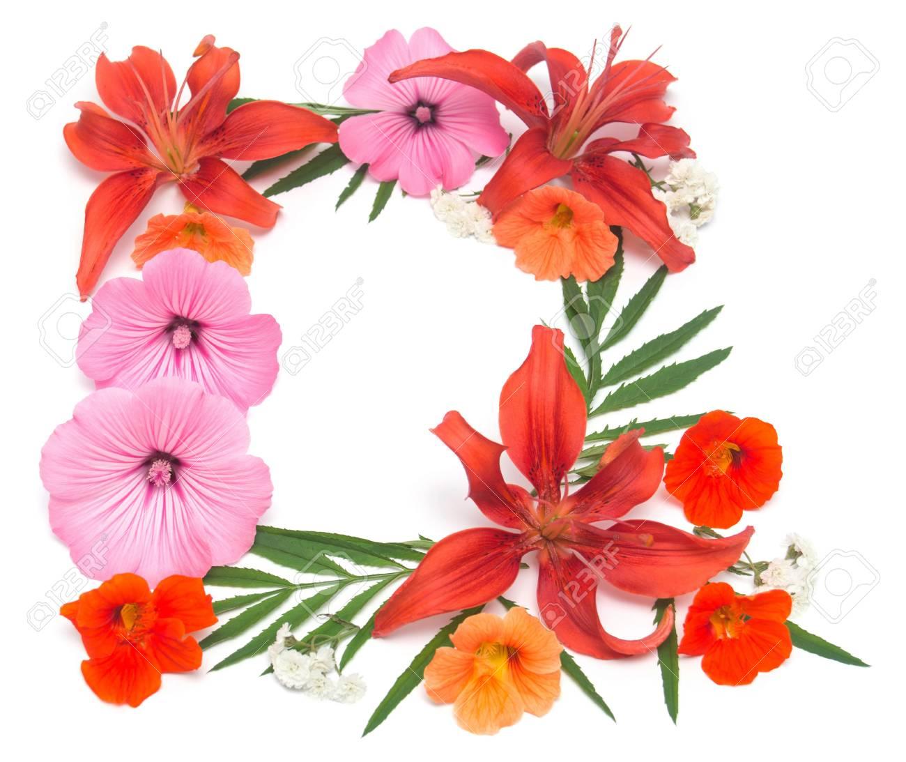 Couronne De Fleurs De Lys Mauve Capucine Et Isole Sur Fond Blanc Faire Part De Mariage Plat Poser Vue De Dessus Amour La Saint Valentin