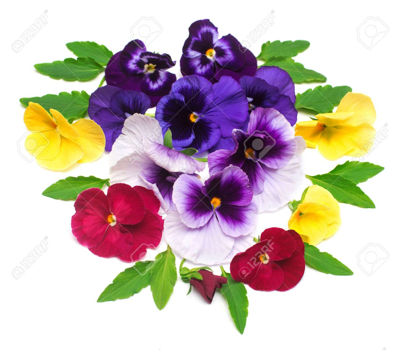 A Beautiful Bouquet With Yellow Purple And Red Pansy Flowers