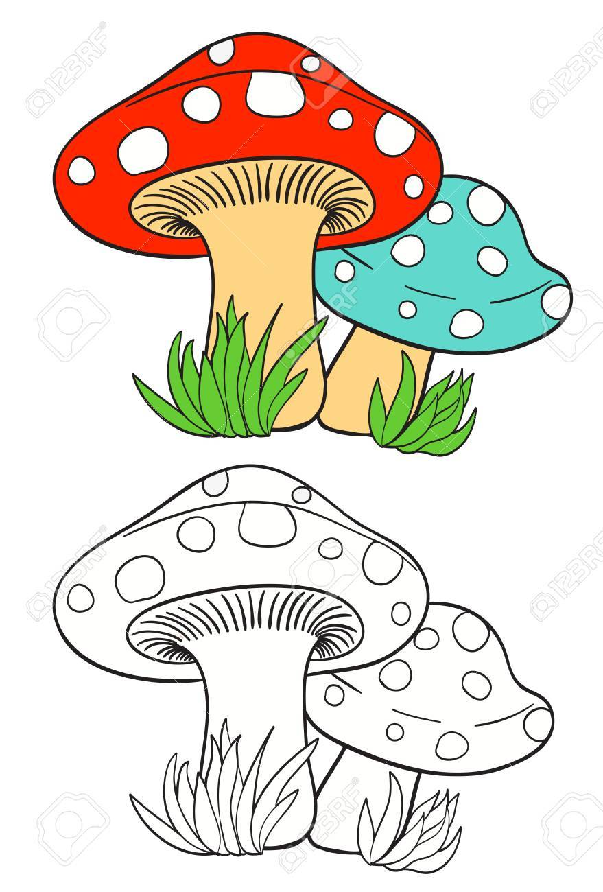 Cartoon Mushrooms And Grass On White With Coloring Page Version Vector Illustration Stock