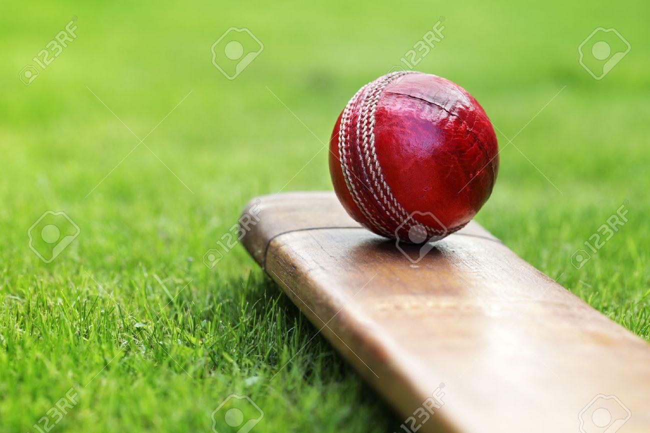 cricket ball resting on a cricket bat on green grass of cricket