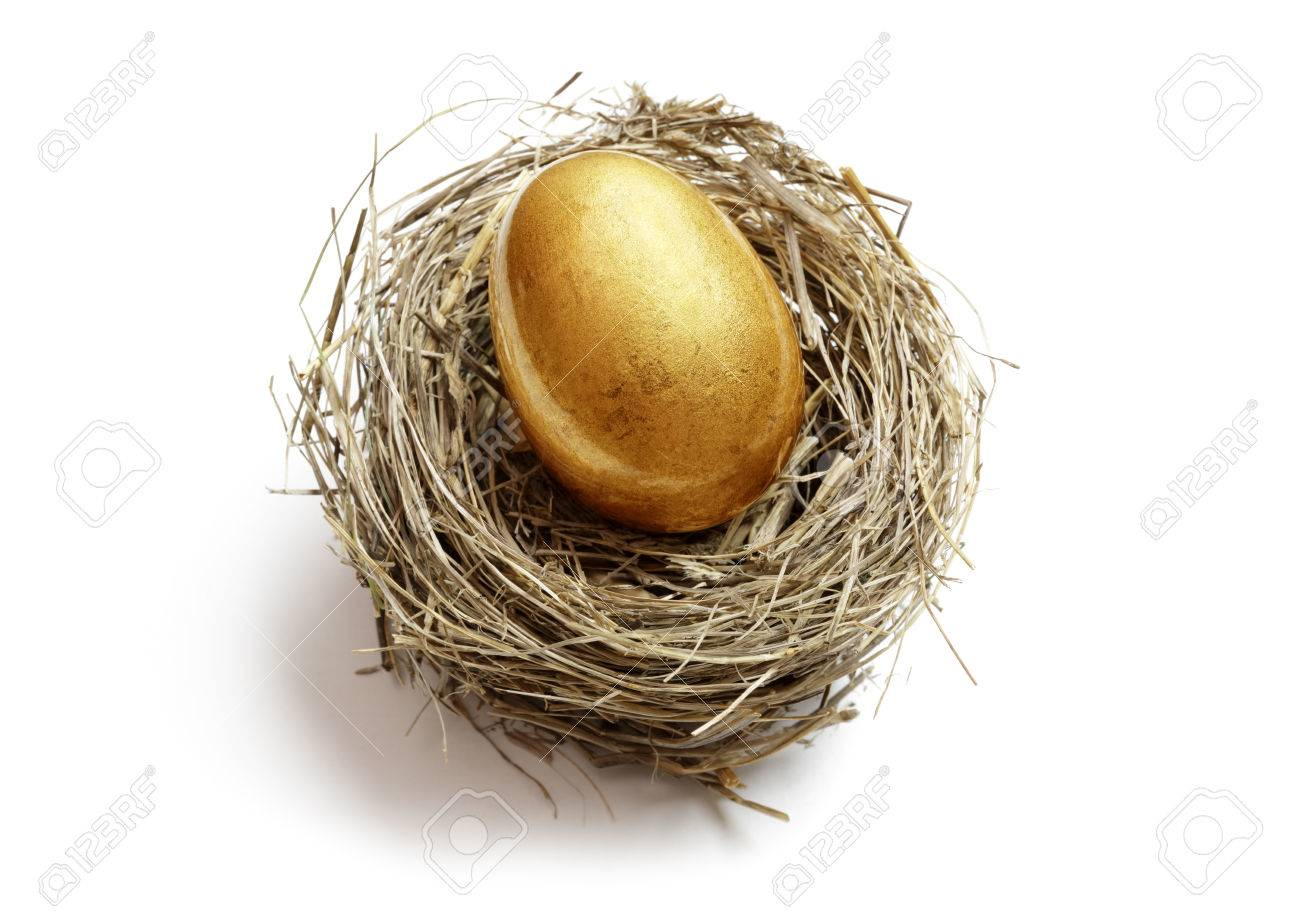 Gold nest egg concept for retirement savings and financial planning - 61386052