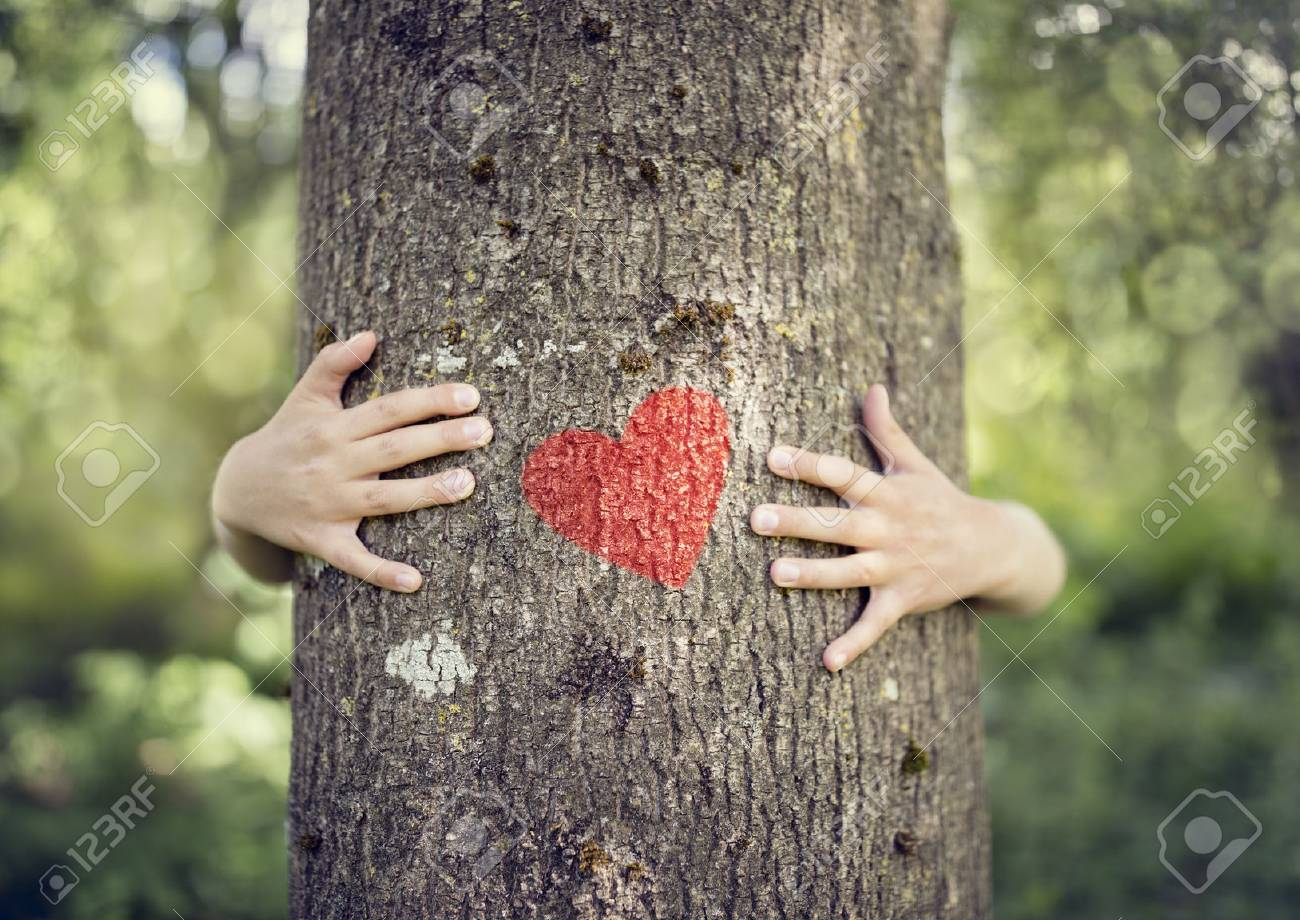 Tree hugging, little boy giving a tree a hug with red heart concept for love nature - 87884681