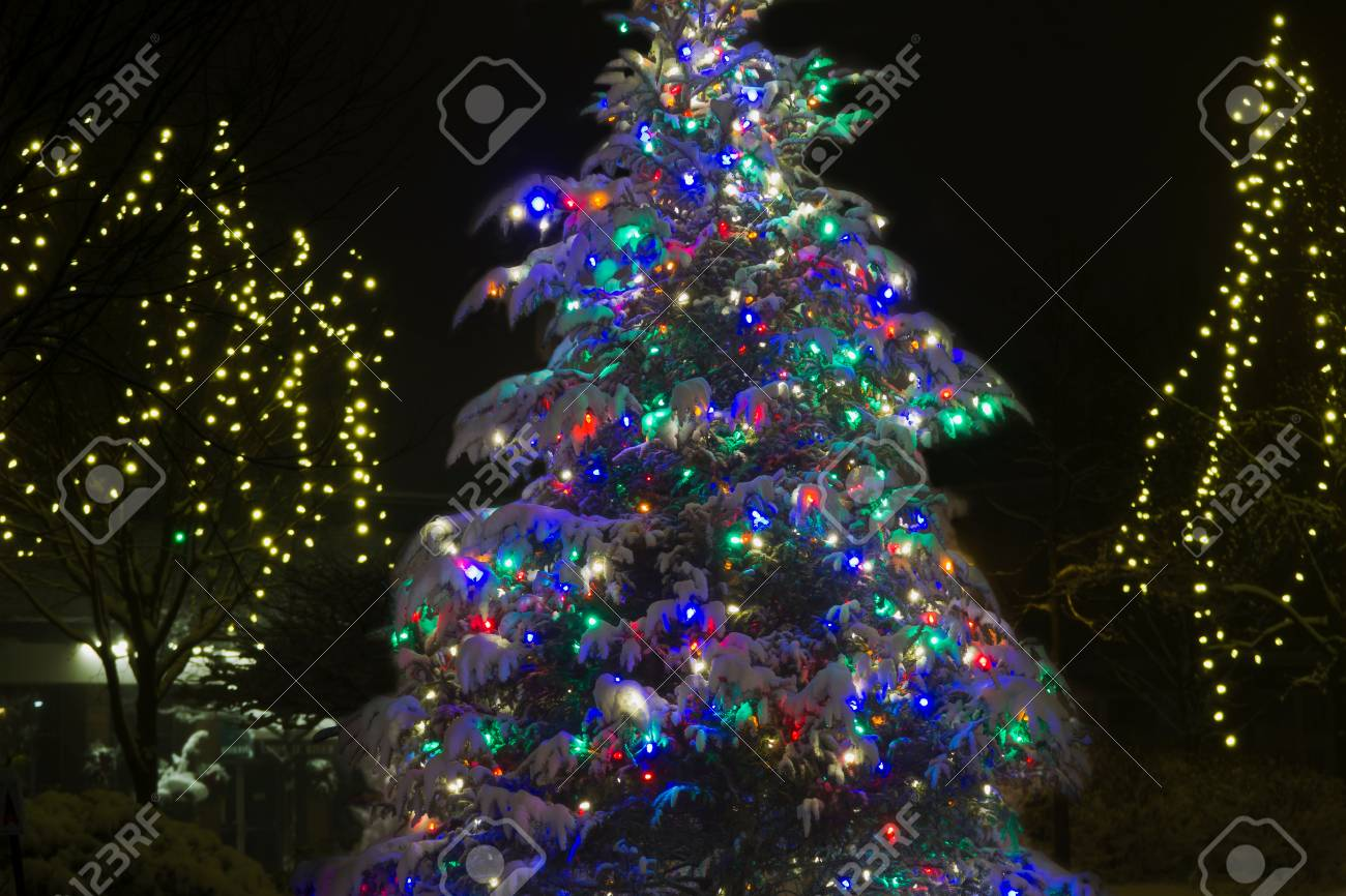 Colorful Christmas Tree Overed With Snow Royalty Vrije Foto