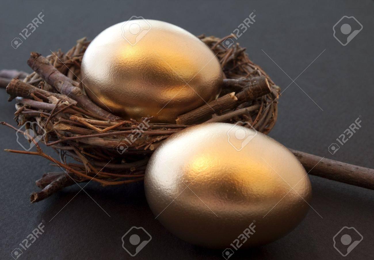 Hopes & Dreams: Golden eggs & twig nest Stock Photo - 7423960
