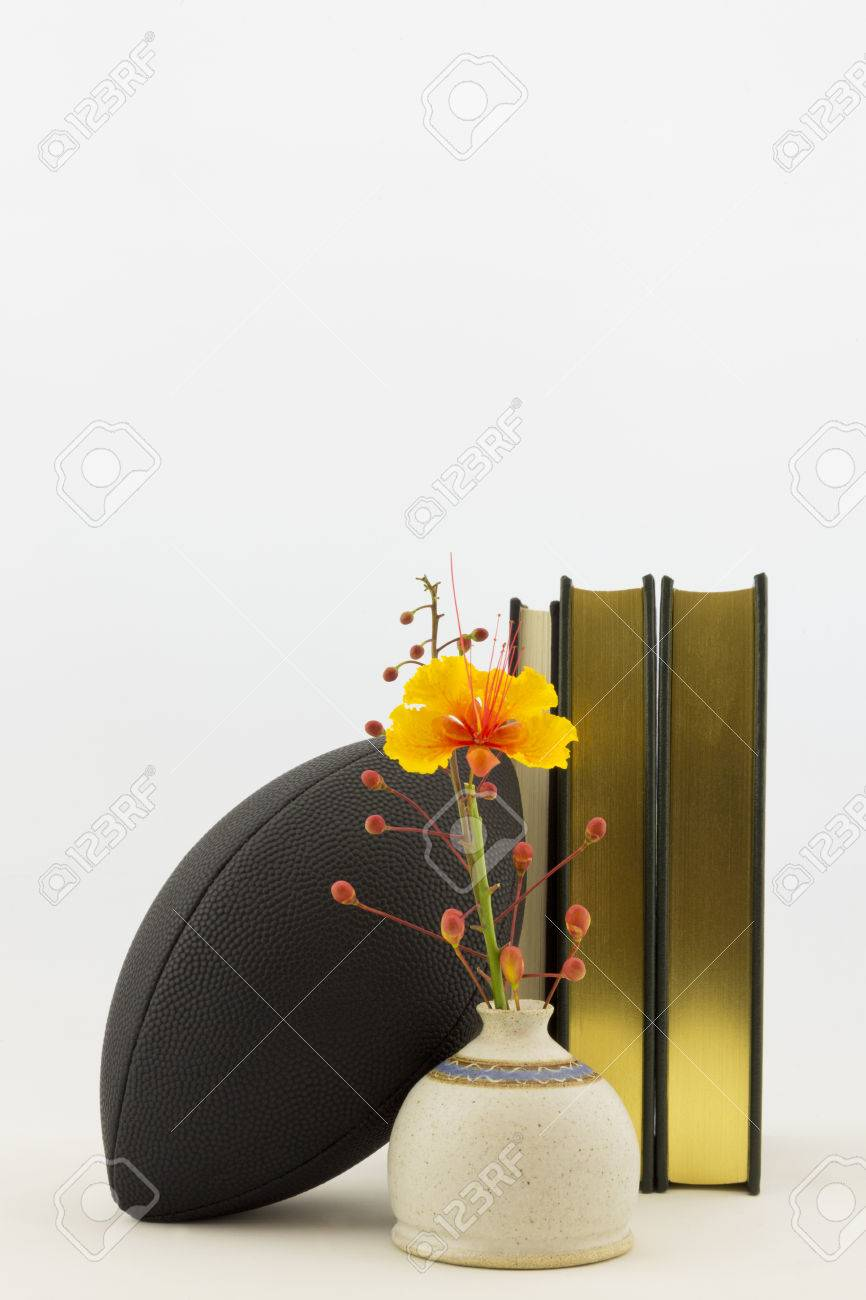 Vertical image with copy space of black football with academic vertical image with copy space of black football with academic books and bird of paradise flower buycottarizona