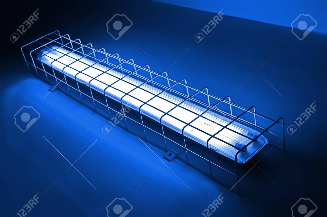 La lampada al neon blu le luci colorate le luci immagine di sfondo