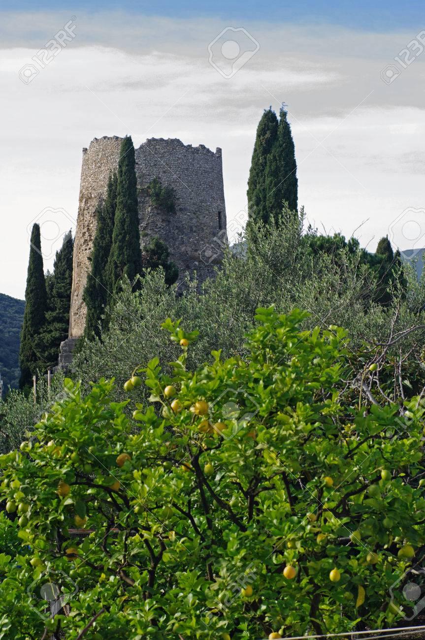 これは有名なローマの政治家・文人キケロ = フォルミア = (イタリア ...