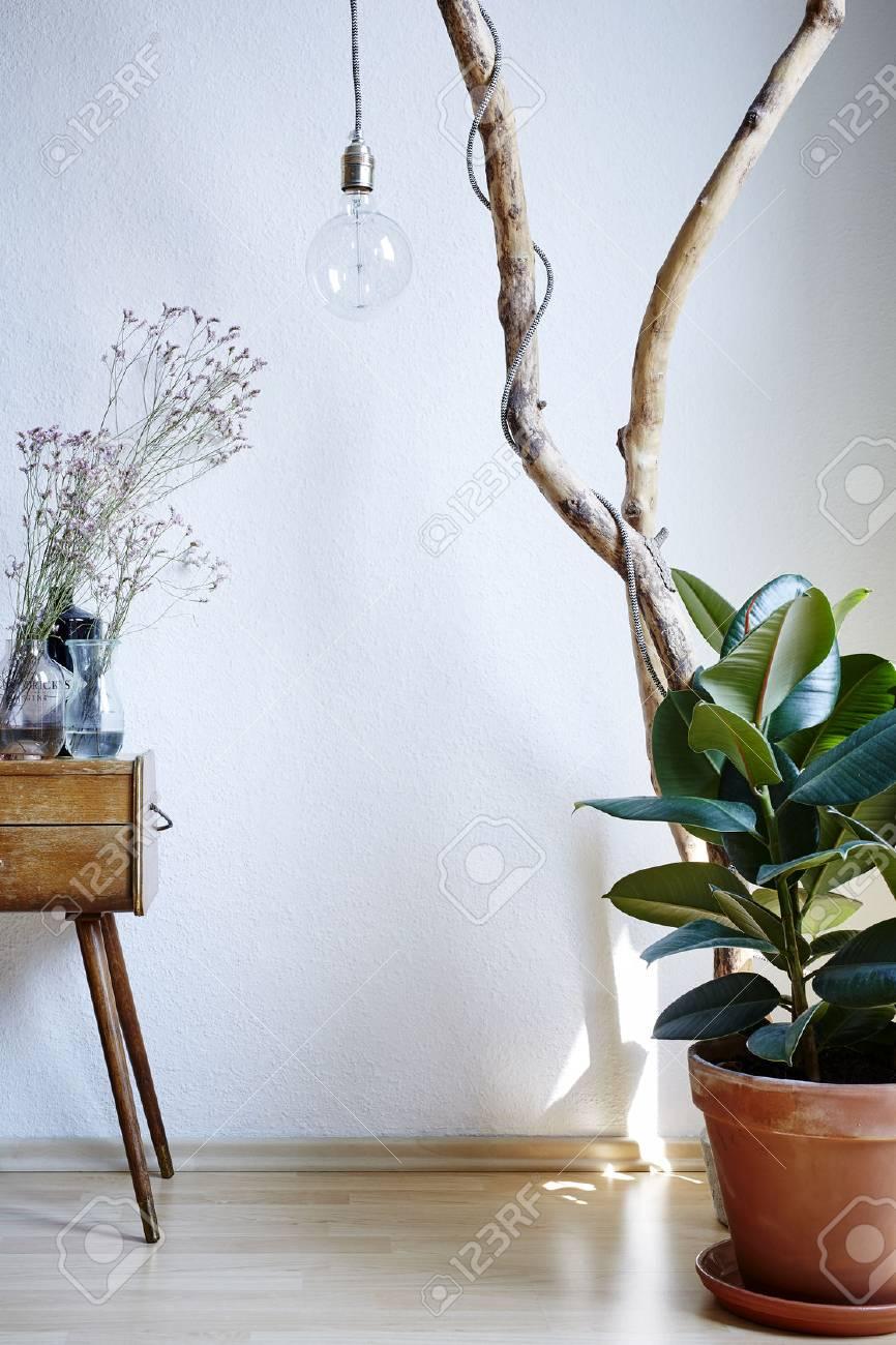 Lebendige Sonnige Atmosphäre Wohnzimmer Dekoration Pflanzen Schrank ...