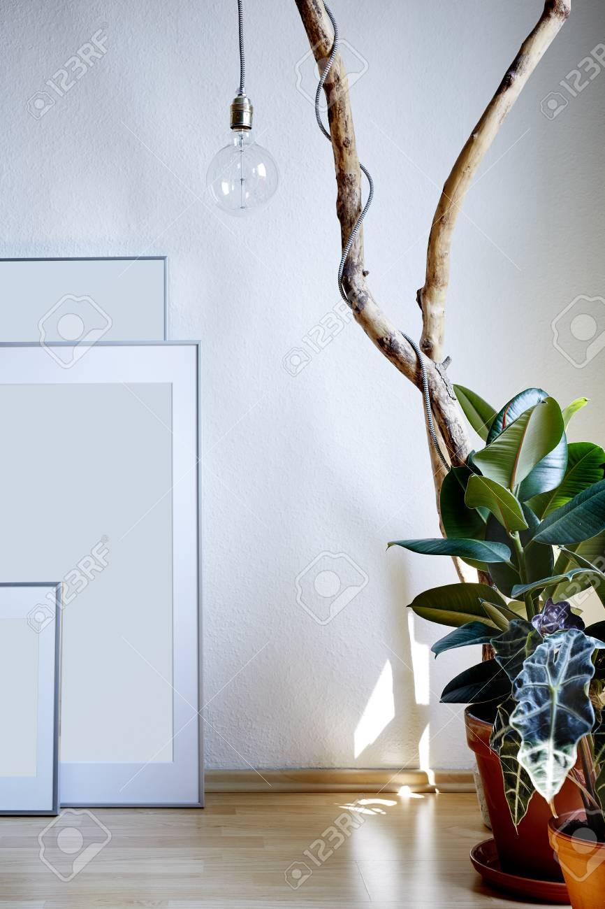Innenarchitektur Rahmen Pflanzen Und Ast Lampe Sonnig Atmosphäre ...