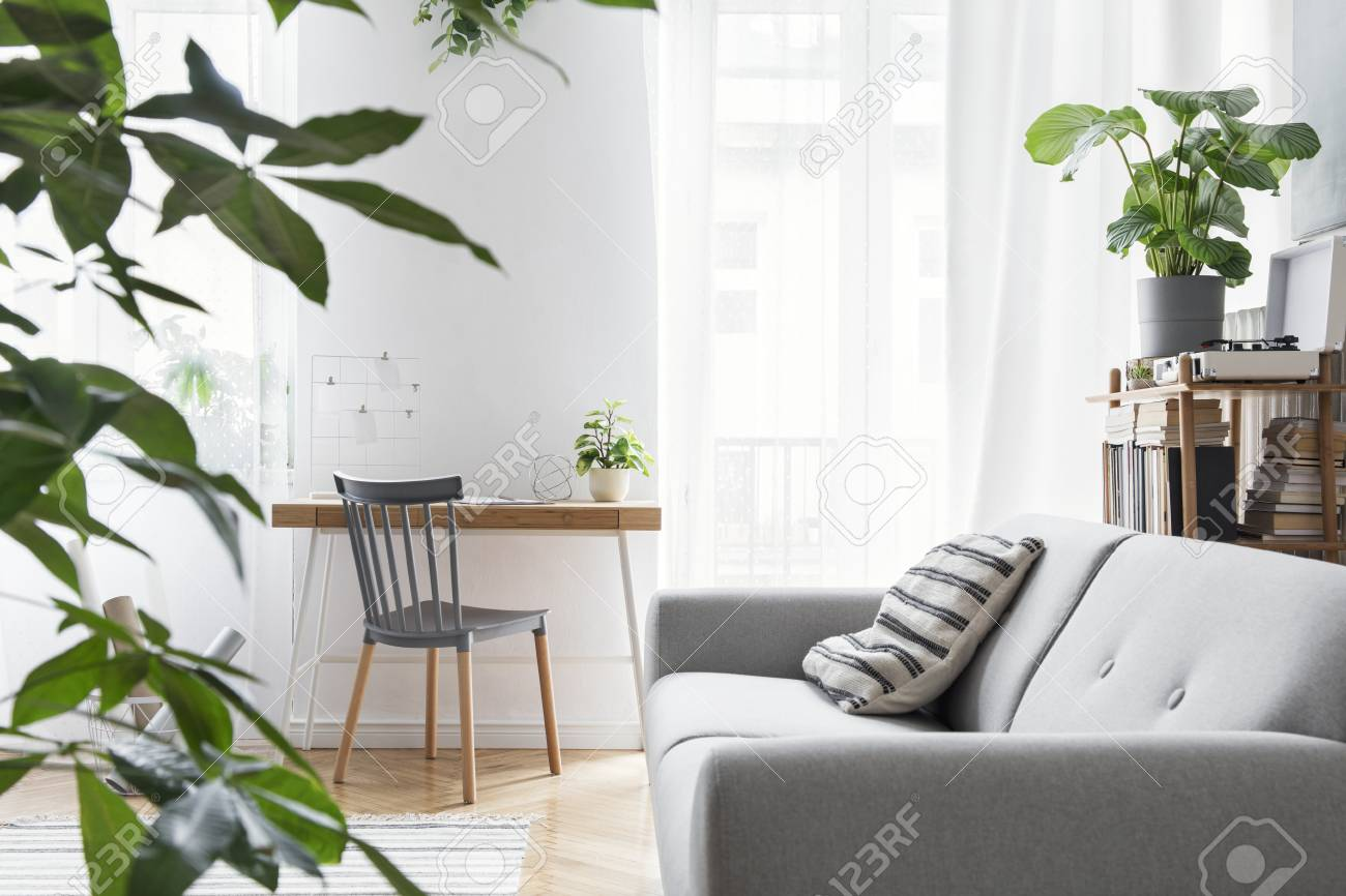 Modern Scandinavian Living Room With Design Furniture Grey Sofa