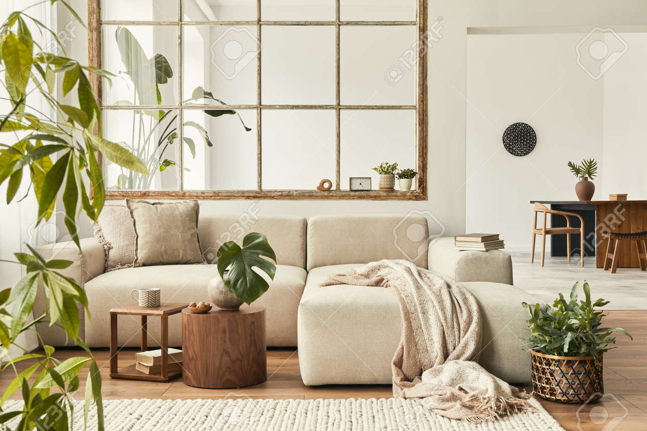 Modern interior of open space with design modular sofa, furniture, wooden coffee tables, plaid, pillows, tropical plants and elegant personal accessories in stylish home decor. Neutral living room. - 166415093
