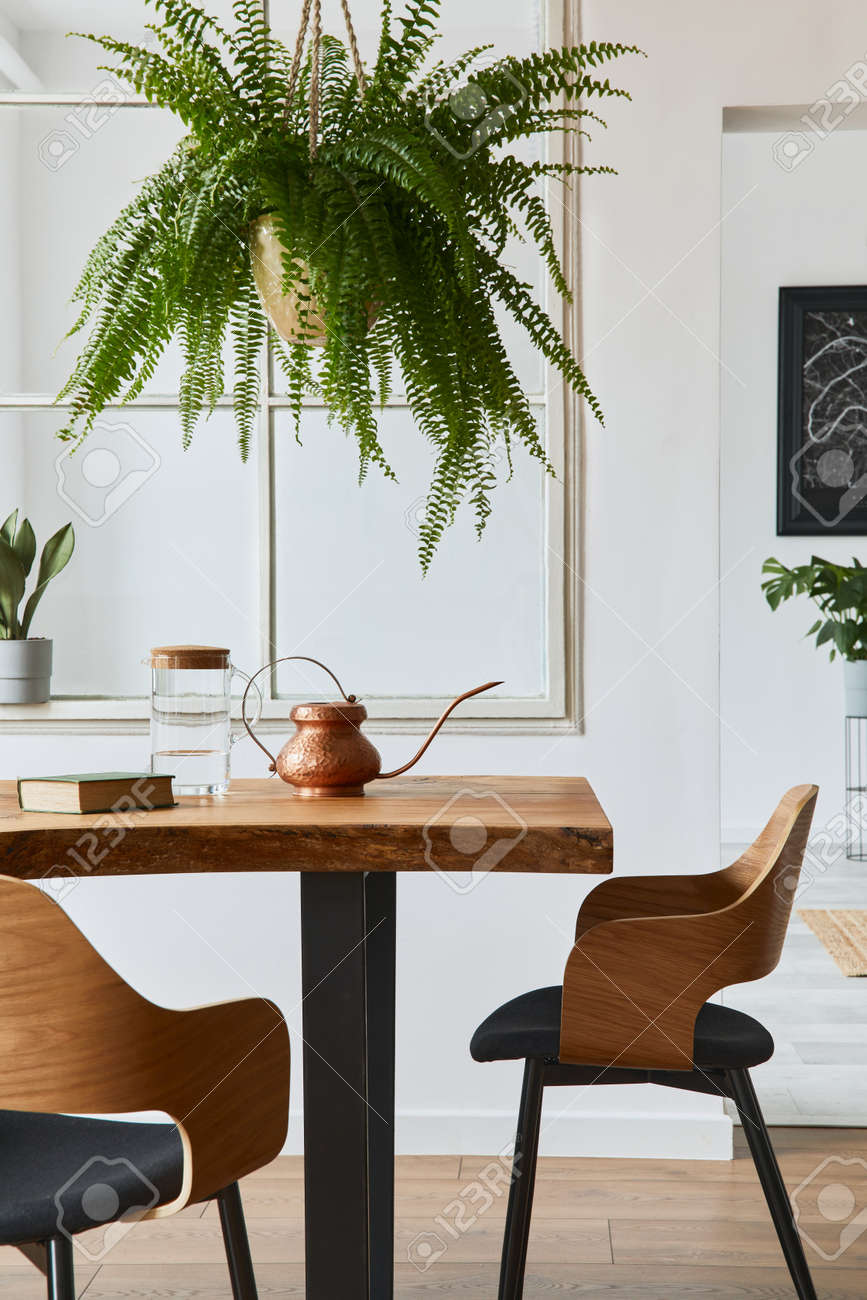 Stylish and cozy interior of dining room with design craft wooden table, chairs, plants, velvet sofa, poster map and elegant accessories in modern home decor. Template. - 168356331