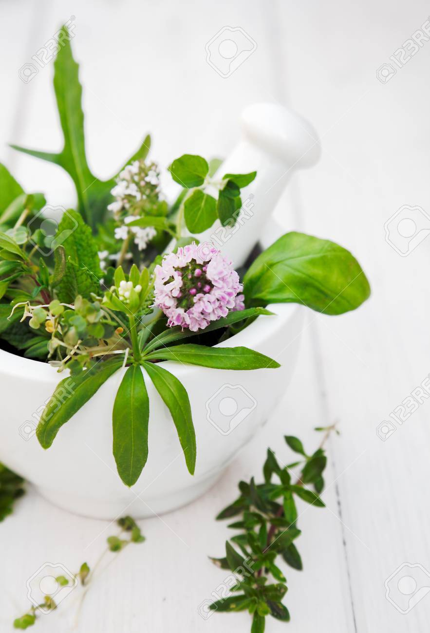 Assorted Herbs in a Mortar with pestle on white wooden background Stock Photo - 13926126