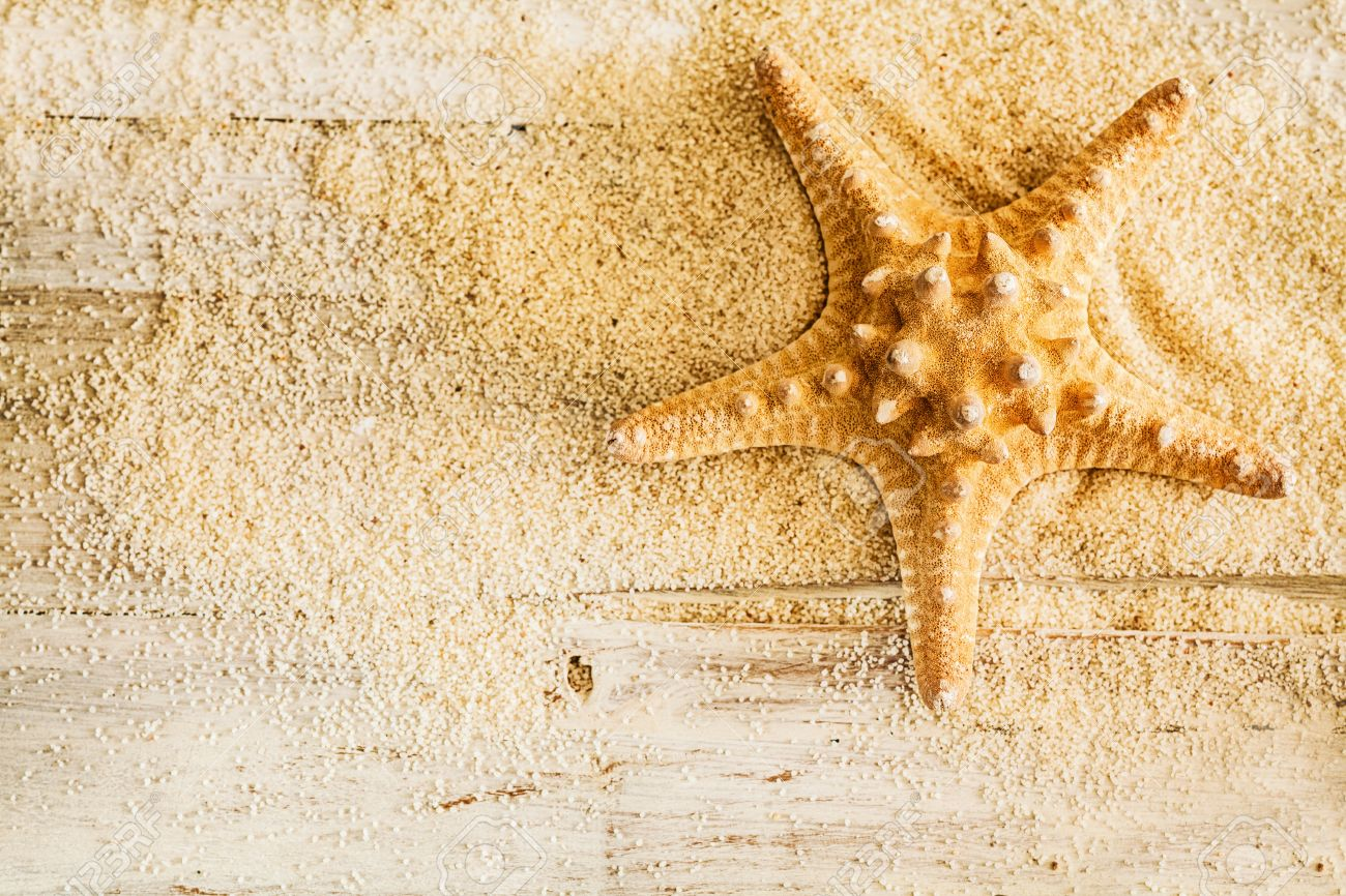 Tropical Marine Background With A Spiny Starfish Or Sea Star Stock