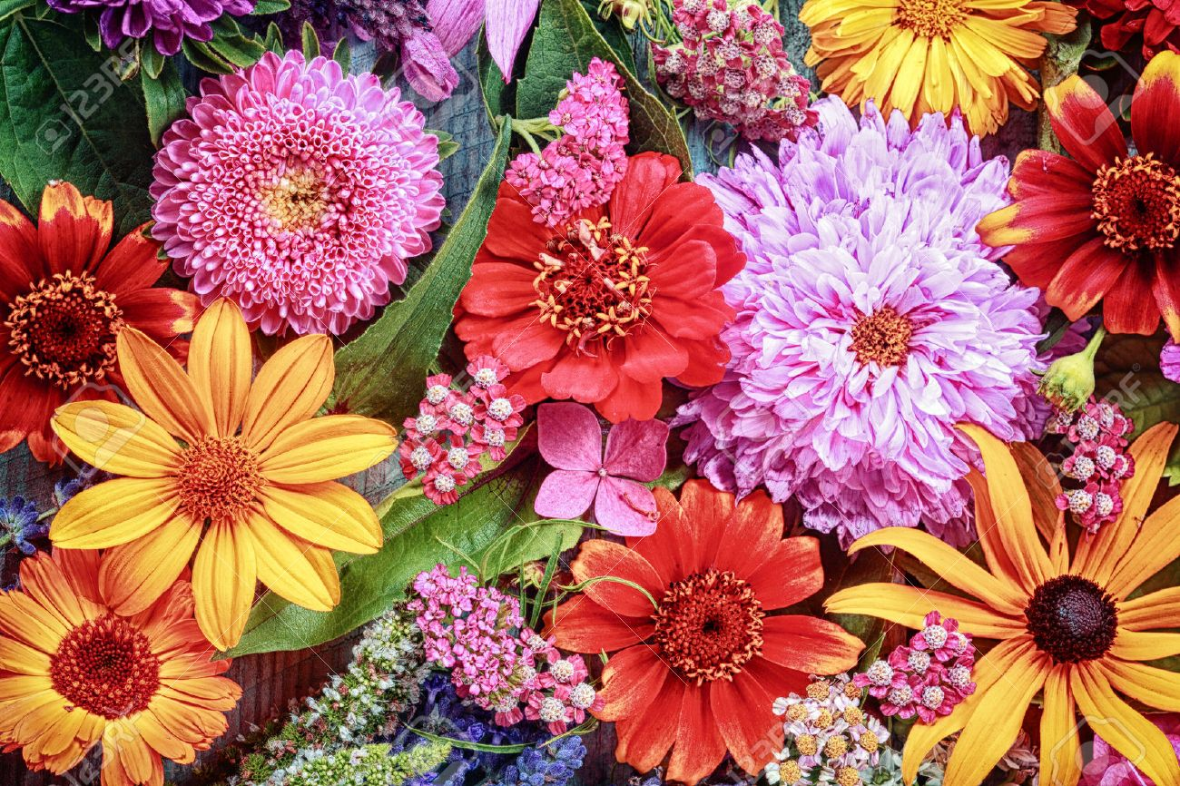 Big flower bouquets best innovative large wedding flower ideas fabulous festive vibrant floral background with a large arrangement of colorful summer flowers in rainbow colors including with big flower bouquets izmirmasajfo Images