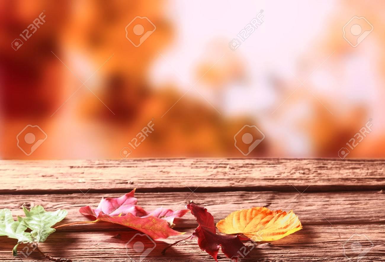 Trois fané automne ou à l\'automne coloré laisse allongé sur une table de  jardin en bois rustique dans un contexte trouble de Golden feuillage ...