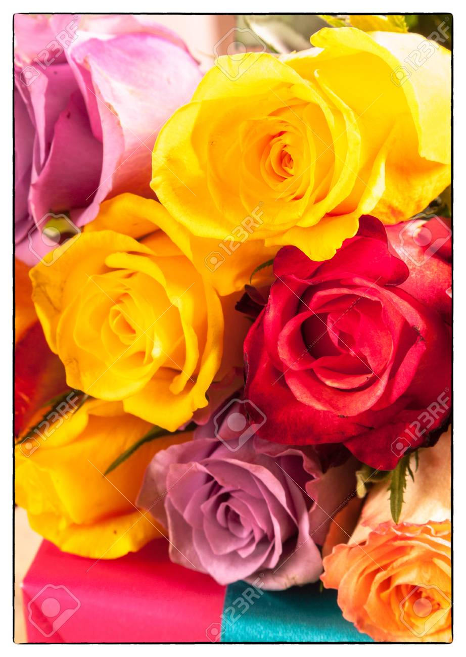Vibrant Bunch Of Colorful Romantic Roses In Red Pink Orange