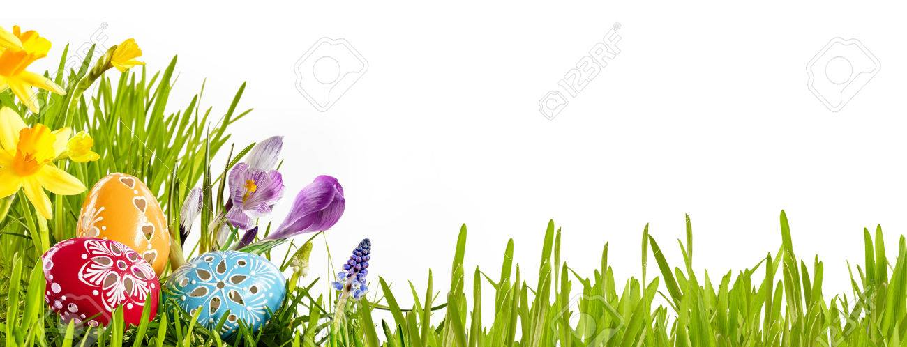 Colorful Horizontal Easter Egg Banner With Spring Flowers In Stock
