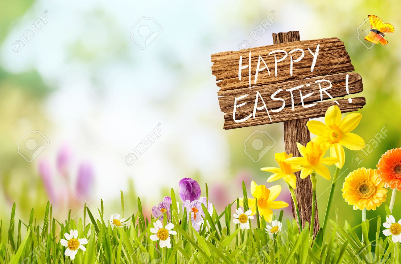 Joyful colorful spring background for a Happy easter with seasonal greeting handwritten on a rustic wooden sign board in spring countryside with fresh green grass and flowers, copy space above - 52284759