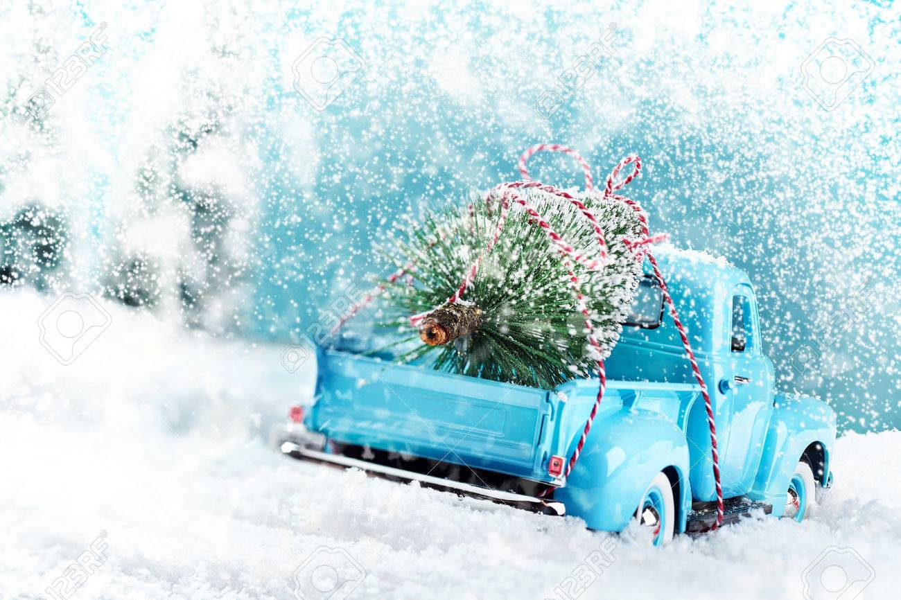 Snow countryside with christmas tree truck driving home - 65740520