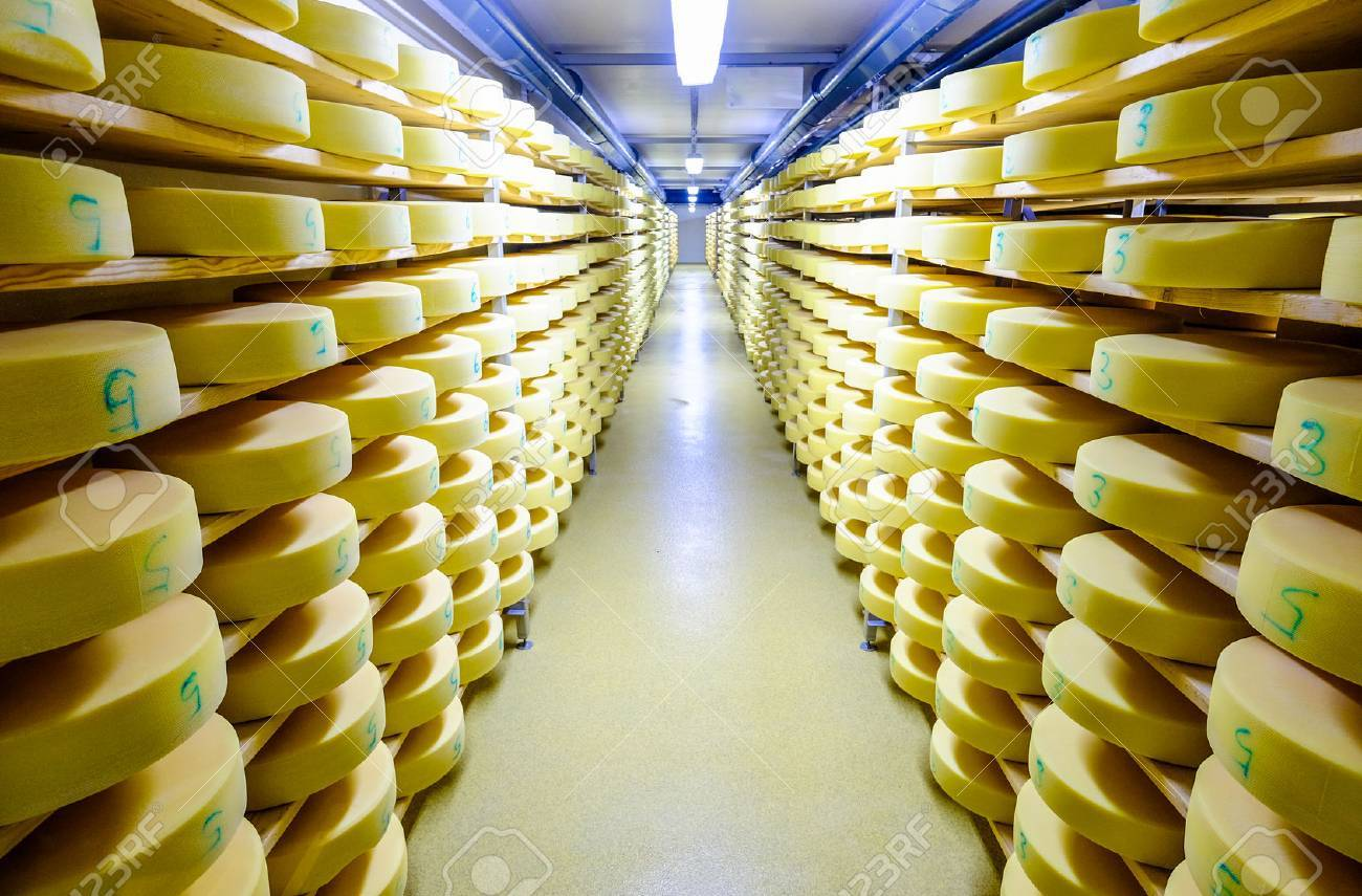 shelves with cheese at a cheese dairy - 71935644
