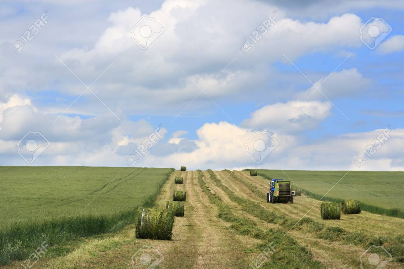 Rural landscape with hay bales Stock Photo - 5109957